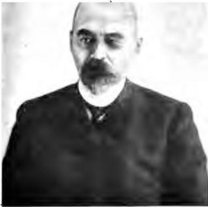 A. O. Volkovich (1).png